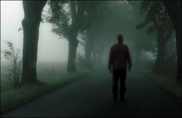 silhouette-of-man-walking-through-misty-trees